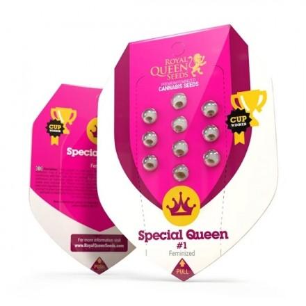 Special Queen n. 1 - feminizovaná semínka 10 ks Royal Queen Seeds