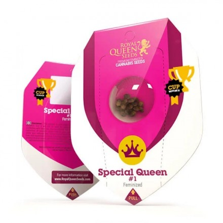 Special Queen n.1 - 5 ks feminizované semena Royal Queen Seeds