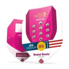 Royal Runtz - feminizovaná semínka 10 ks Royal Queen Seeds
