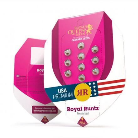 Royal Runtz - feminizovaná semienka 10 ks Royal Queen Seeds