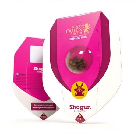 Shogun - feminizovaná semínka 3 ks Royal Queen Seeds