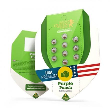 Purple Punch Automatic - fem. a samonakvétací semienka 3ks Royal Queen Seeds