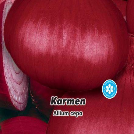 Cibule jarní červená - Karmen - semínka 2 g