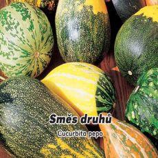 Okrasné tykvičky - semínka 3 g