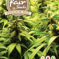 Indoor MIX - 5ks feminizované semínka Fair seeds