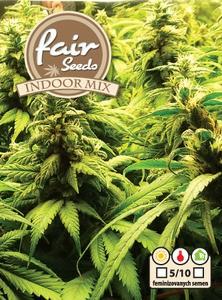 Indoor MIX - 5ks feminizované semienka Fair seeds