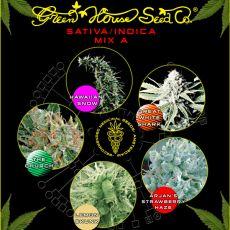 Sativa/Indica Mix A - semínka 5 ks feminizovaná semínka Green House Seeds