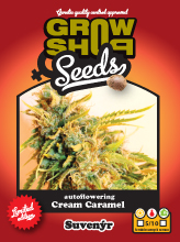 Cream Caramel - 5 fem. a samonakvétací semena Growshop seeds