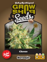 Cheese 5 feminizované semínka Growshop seeds