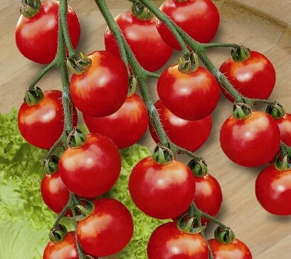 paradajkyCherrola