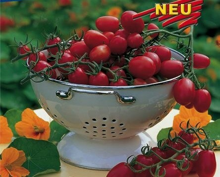 Cherry paparajky Dasher F1