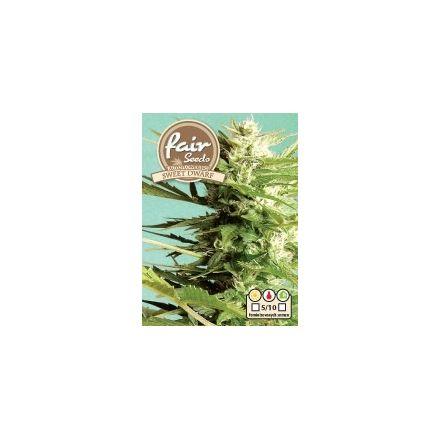 AutoSweet Dwarf – autoflowering semienka 5 ks Fair Seeds