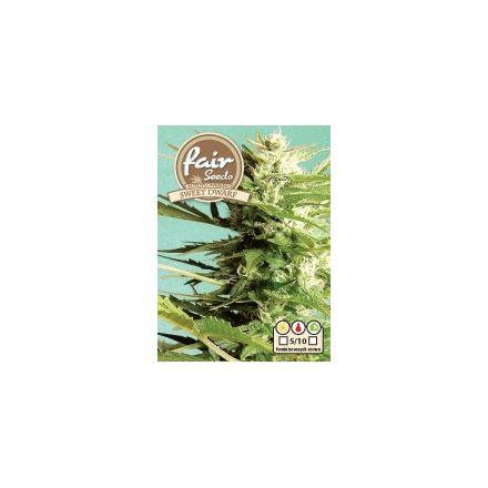 AutoSweet Dwarf – autoflowering semínka 10 ks Fair Seeds