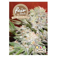 Great White Shark – feminizovaná semínka 10 ks Fair Seeds