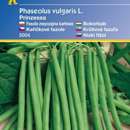 Keříčková fazole Prinzessa – semena fazole
