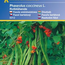Fazole nádherná, červeně kvetoucí – semena fazole