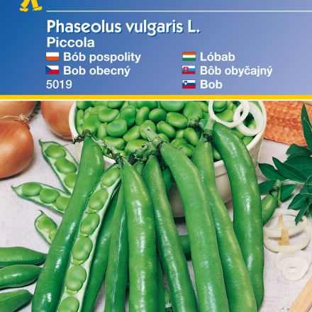 Fazole nádherná, Piccola – semena fazole