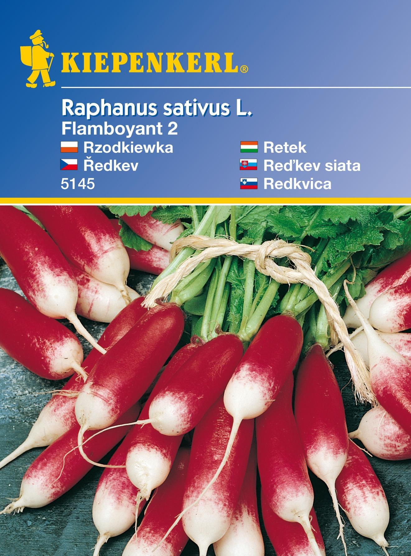 Ředkvička Flamboyant 2 - semena ředkviček
