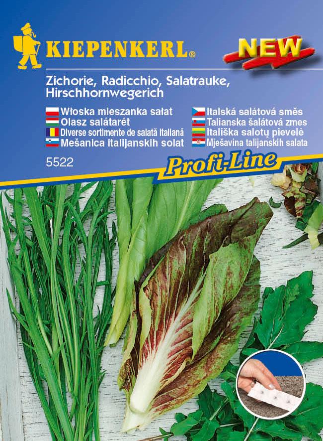 Italská salátová louka výsevný pás - výsevný pás salátu