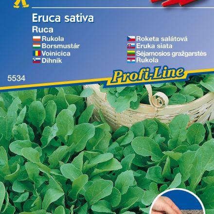 Rukola – osivový pásek - výsevný pás rukoly