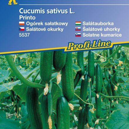 Okurka hadová Printo - semena okurky