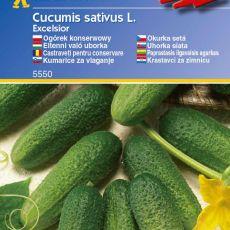 Okurka nakládačka Excelsior - semena okurky nakládačky