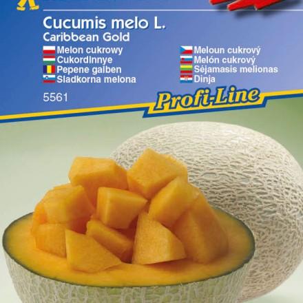 Meloun Carib. Gold - semena melounu
