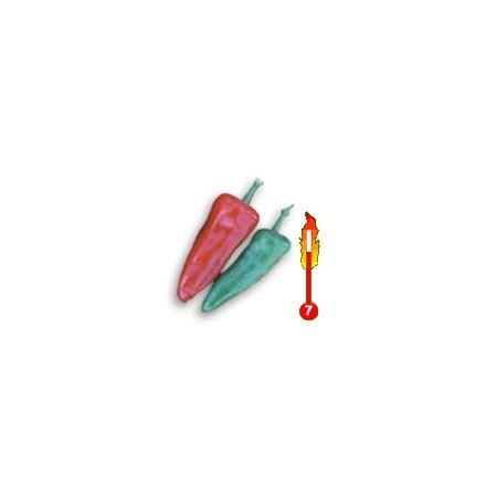 Chilli Fresno (rostlina: capsicum) – semena chilli 7 ks
