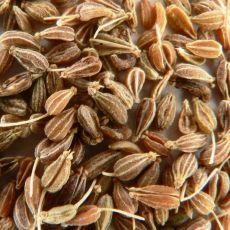 Aníz (Pimpinella anisum) plod 50g