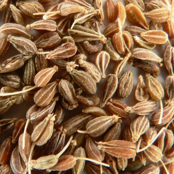 Anýz (pimpinella anisum) plod 50g