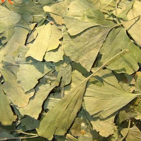 Jinan dvoulaločnatý (ginkgo biloba) list 50g