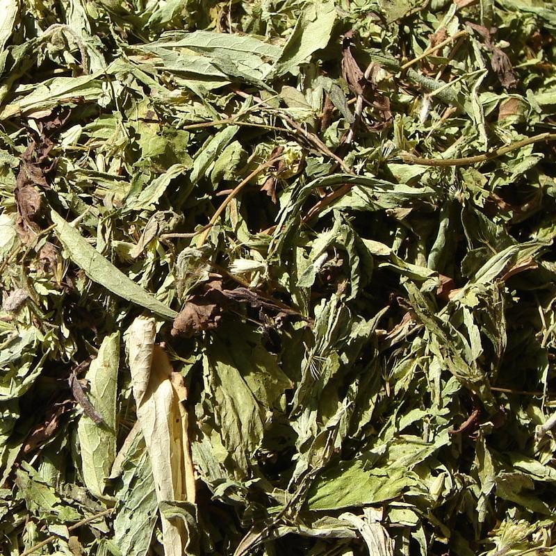 Stévia sladká (stevia rebaudiana) list 50g