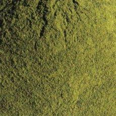 Mladý zelený jačmeň 50g
