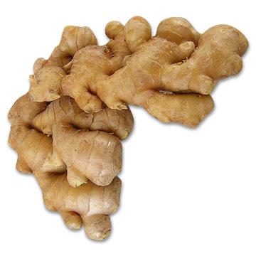 Zázvor okrasný - Clarks (Zingiber clarkei Clarks ) 5 semen