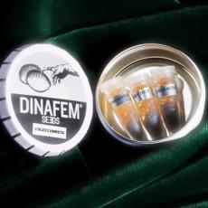 Collector Mix 3 - feminizovaná semínka 6ks Dinafem