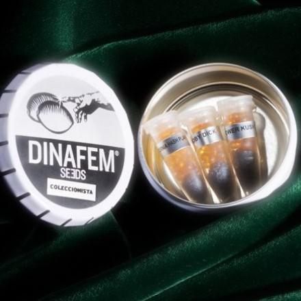 Collector Mix 9 - fem. a samonakvétací semínka 6ks Dinafem