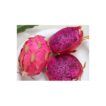 Pitaya červená (Hylocereus costaricensis ) 7 semen