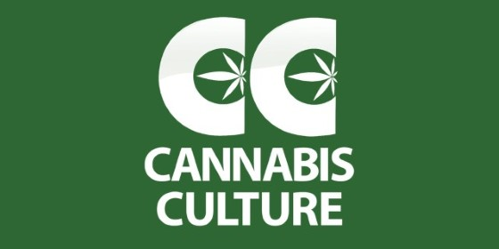 Cannabis Culture magazin