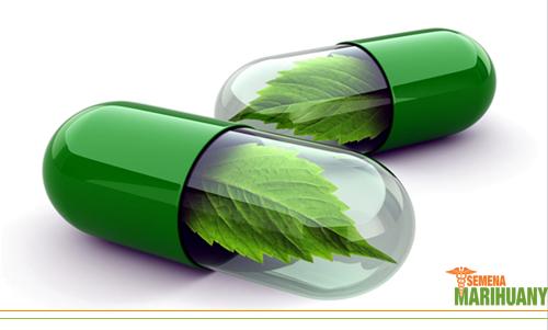 léčebné konopí kanabinoidy CBDV
