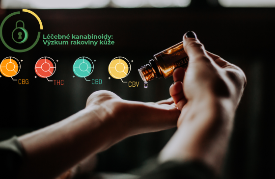 rakovina kože liečivé konope účinky cbd thc masti