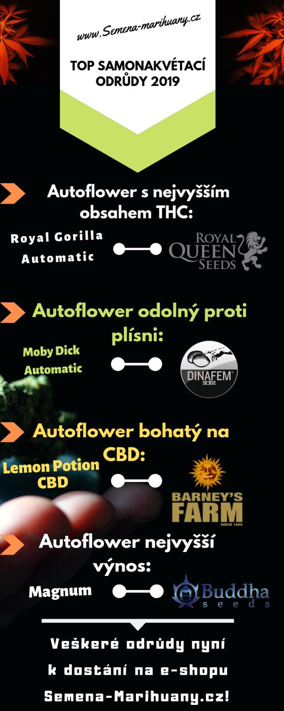 autoflower semínka, autoflower odrůdy, nejlepší odrůdy konopí, nejsilnější konopí, nejsilnější marihuana, nejsilnější autoflower, samonakvétací odrůdy, marihuana