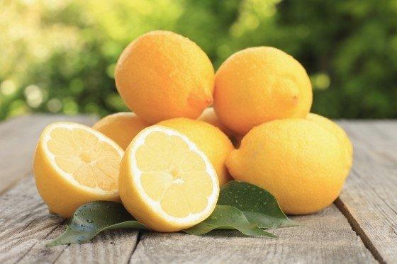 terpen Limonen v konopí