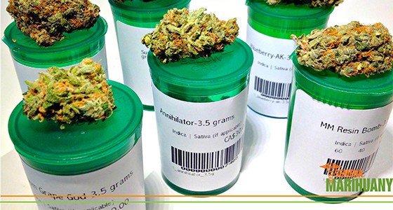 Dávky THC a CBD