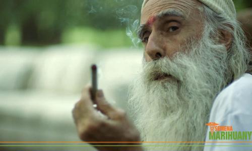 Náboženství a konopí marihuana