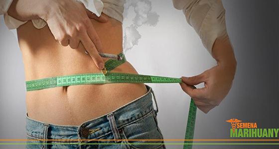 kanabis chudnutie dieta