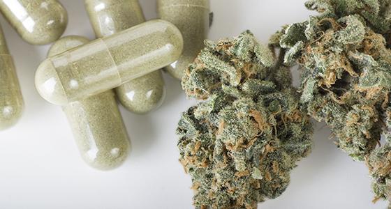 léčebné konopí marihuana