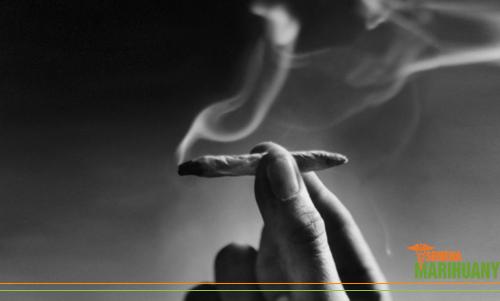schizofrénia a marihuana