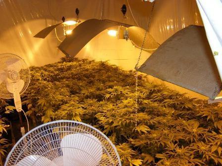 Ventilátory v pestovacej miestnosti