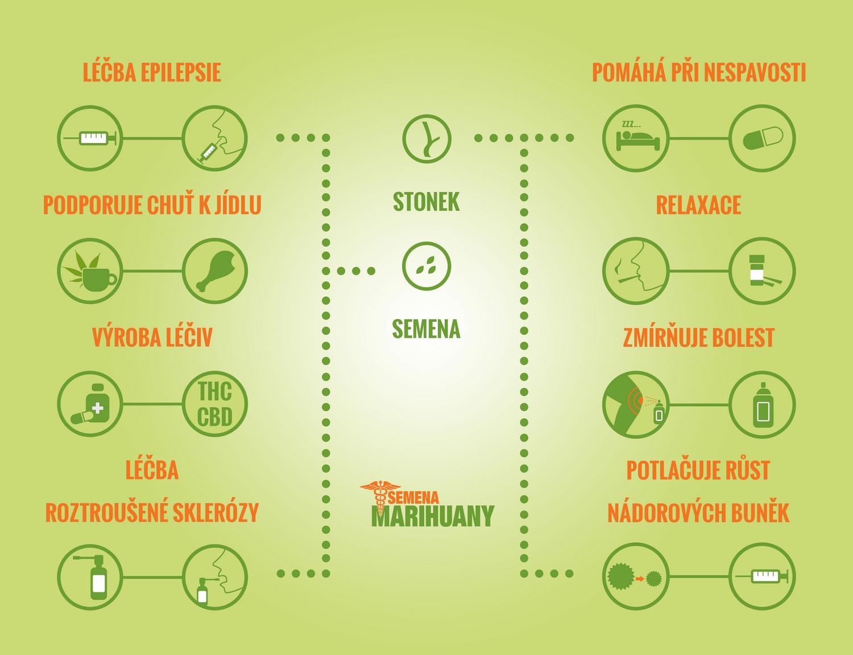 Jaké nemoci konopí léčí Semena-marihuany.cz