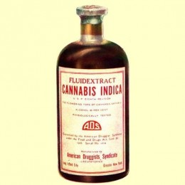 Fénixovy slzy - zázračný lék